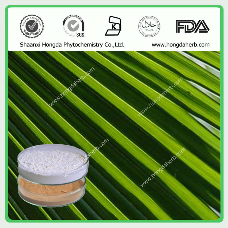 Manufacturer Supply Hot Saling Saw Palmetto Extract/CAS NO. 84604-15-9