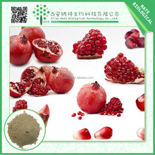 Trustworthy China supplier top punicalagin pomegranate peel extract 60%