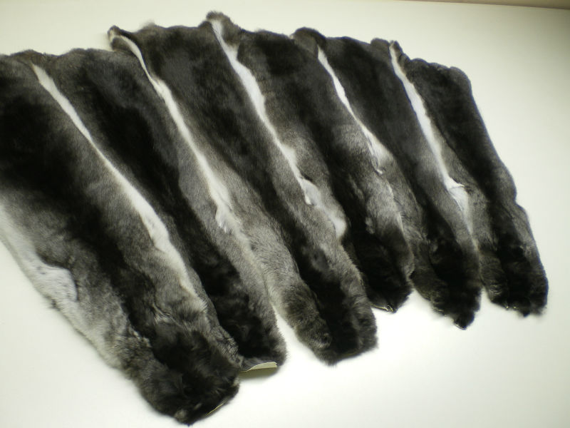 Chinchilla fur skins