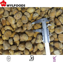 high quality iqf chestnut Frozen good price