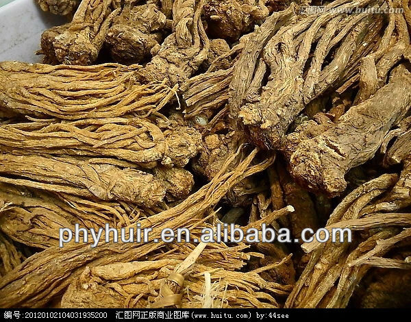Angelica Extract Natural ingredient