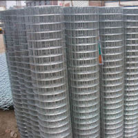"3/8"" x 3/8""hot dipped galvanized welded wire mesh for protection net"