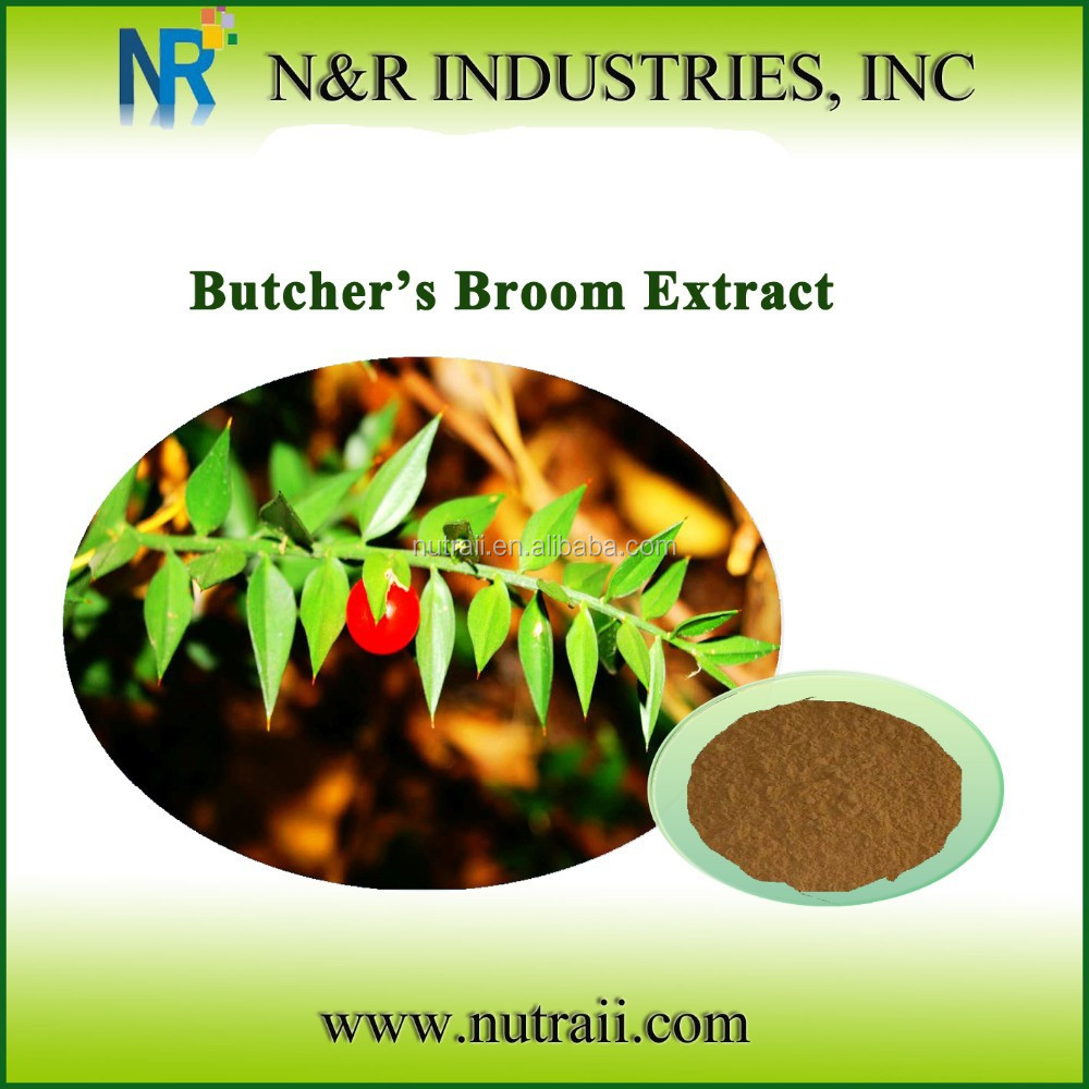 Bacopa Monnieri Extract 20%~50% HPLC Bacopaside