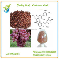 Natural water soluble grape seed extract(high orac value).organic grape seed extract 95%