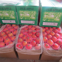 chinese red fuji fresh apple best price for sale