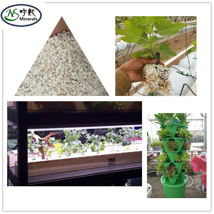 Agricultural expanded perlite for hydroponic growing media
