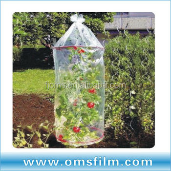 Biodegadable perforating UV resist tomato growing covers sleeves