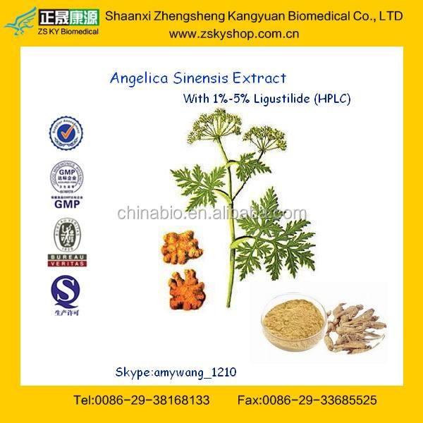 100% Natural Angelica Root Extract