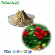 100% Natural cherry juice powder