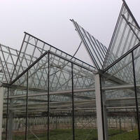 Commercial Multi Span Agricultural Glass Greenhouse
