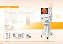 Portable Endoscopic Visual Imaging System