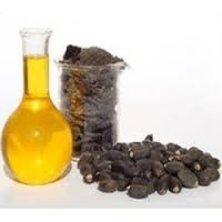 Jatropha oil for biodiesel