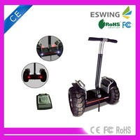 Professional Supplier Off-road 2000W Motor 2 Wheel Self Balancing Electric Mobility Scooter