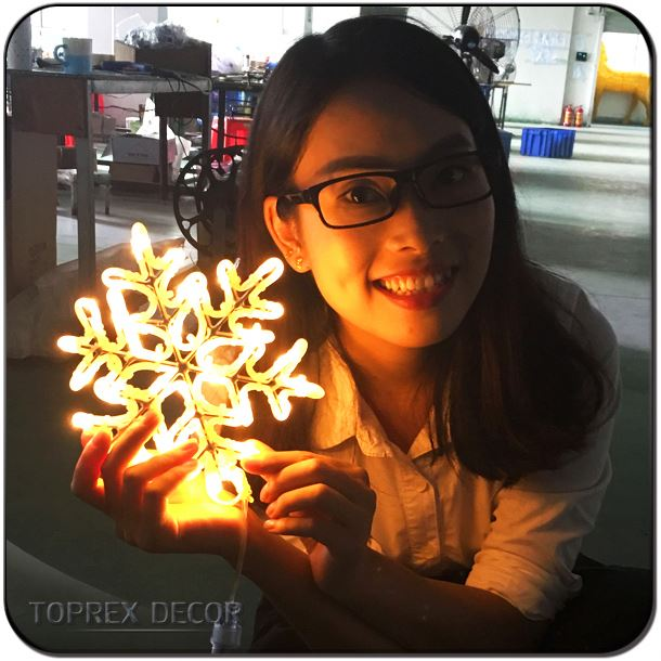 Outdoor christmas decorations led sculpture snowflake light low voltage led motif rope lights