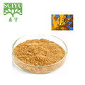 Health Benefits Ginkgo Biloba Leaf Extract Flavonoide 24%