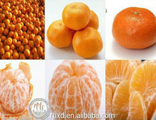 Professional supplier of fresh mandarin <strong>oranges</strong>