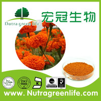 Factory supply Marigold Root Extract / alpha-Terthienyl High quality Marigold flower extract lutein zeaxanthin beadlet