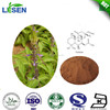 High Quality Forskohlii Extract / Forskolin