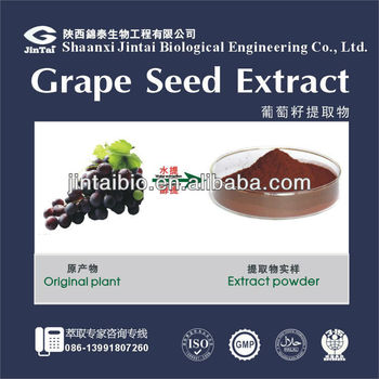 grape seed extract polyphenol 95%