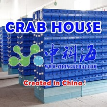 Live mud crab king crab crab boxes