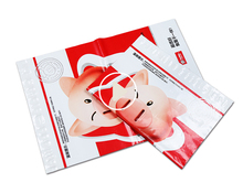 Self Seal Plastic Envelopes For Mailing Courier Flyer Bag
