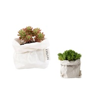 Durable flower grow bag washable kraft paper pot planter