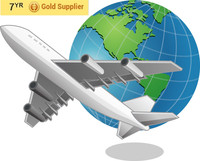 Alibaba Arifreight /Express Shipping From Shanghai/Shenzhen/Ningo China to Germany