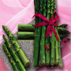 Lu Sun 2016 Good Quality High Germination Asparagus Seeds