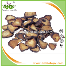 Fine Quality 100% Nature Pure Radix Rehmanniae Extract (digoxin)5:1;10:1;20:1/ High Quality Treatment Dermexanthesis