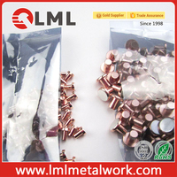 High Content Agsno2 Bimetal Electrical Contacts