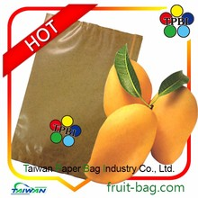 TPBI kate mango tree paper bag double brown protection paper bag