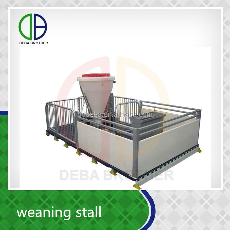 Pig Pen Livestock Equipment Weaning Stall