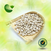 Medium White Kidney Beans White Kidney Beans