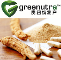 Powder Panax Ginseng Extract