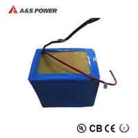 rechargeable 12V 50Ah LiFePO4 battery with BMS