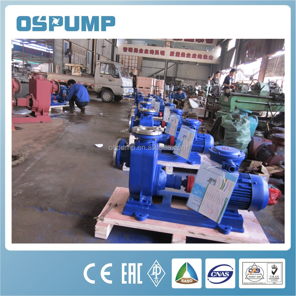 CYZ Series Explosion Proof Motor Driven Single Stage Single Suction Oil Pump