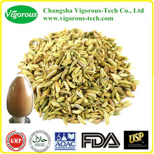 Organic Fennel Extract/Fennel Extract powder/fennel plant extract