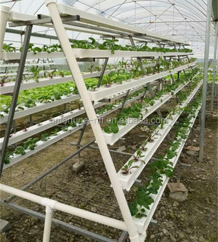 Greenhouse Hydroponic Vegetables Vertical Farming Pvc Pipe