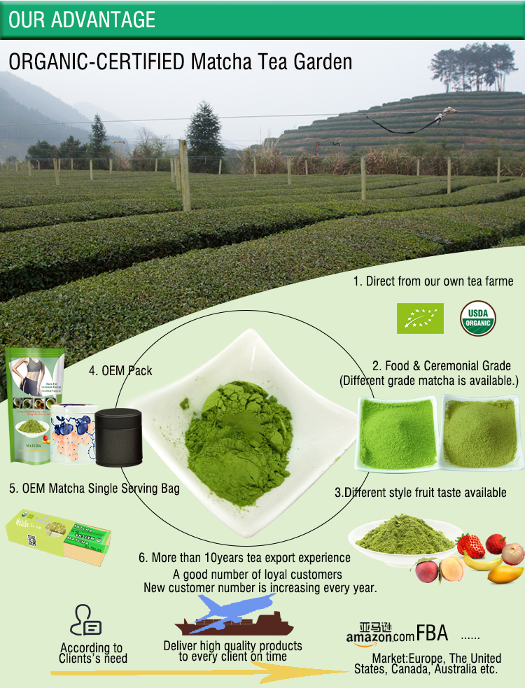 10 Years Tea Export Experience OEM Organic Certified Matcha Powder