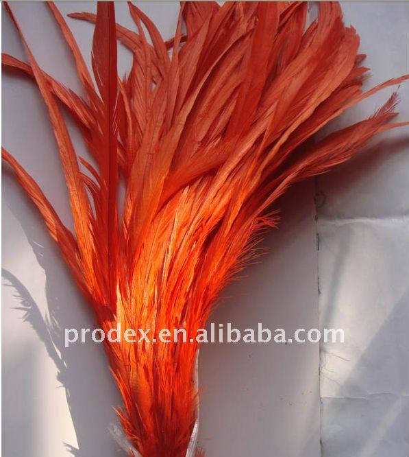 long saddle hackle feathers, tail feathers, roster feathers,