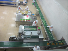 Plast Link mobile phone /led lamp assembly line/assembly line equipment/machine