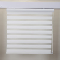 Day And Night Zebra Blinds For