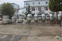 brewhouse 300L hotel banquet equipment making fresh beer
