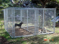 High Quality Pet Products Iron Large Dog house, Pet carrier for sale,