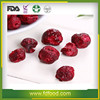 Healthy and Delicious Freeze Dried Fruit Sour Cherry