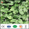 home decor cheap outdoor artificial hedge leaf hegde green fences