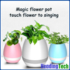 OEM Touching Flower Singing Plant Interaction