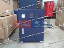 Automatic Electric Industrial Steam Heater