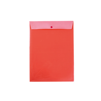 Clear Holder File A4 With Button Closure