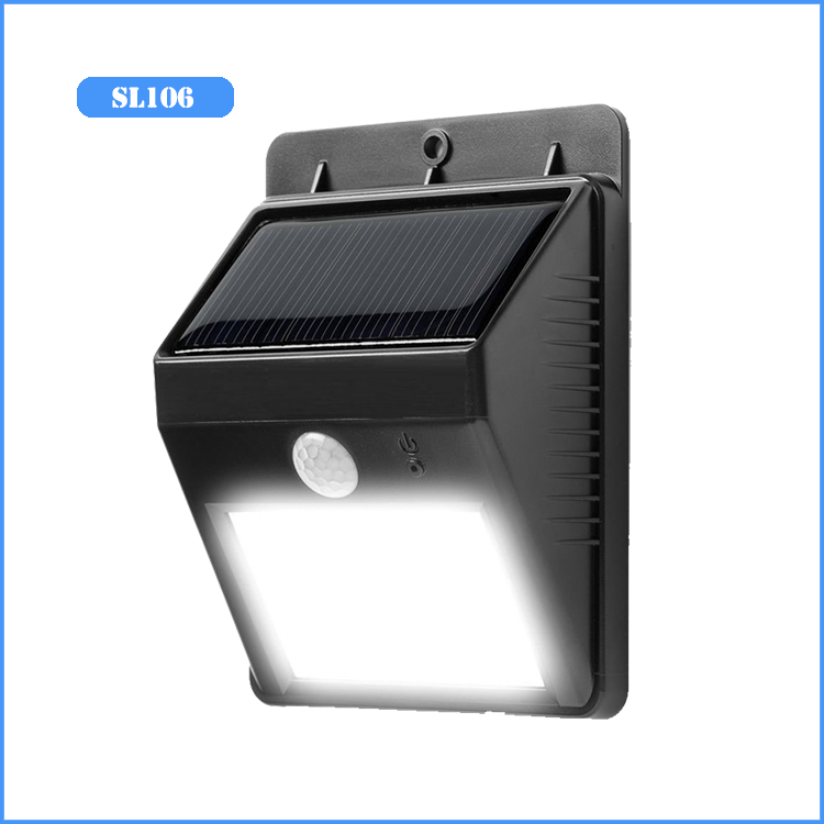 Outdoor light with motion detector